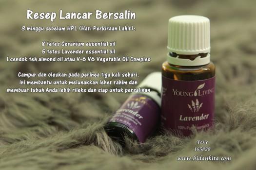 Lavender Promo 2